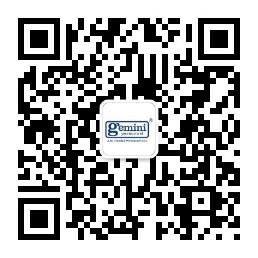 Gemini WeChat